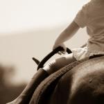 lovas_nemzet_2017_tavasz_gyerekek_és_lovak_09