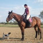 lovas_nemzet_2017_tavasz_gyerekek_és_lovak_11