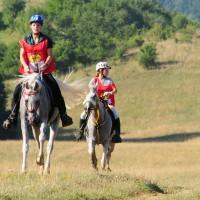lovasok02