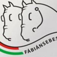 fábiáni logo(7)