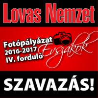 szavazás_tavasz