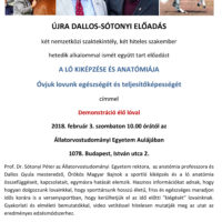 DALLOS_SOTONYI_3